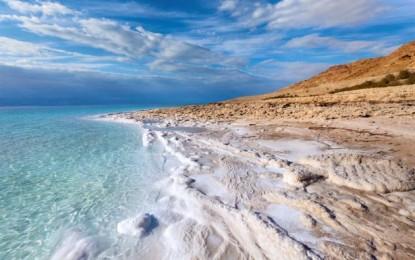 Mortadela estaba el mar