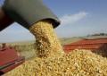Agricultura en alerta