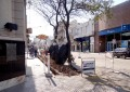 No se podrá estacionar en la  calle San Martín hasta mañana
