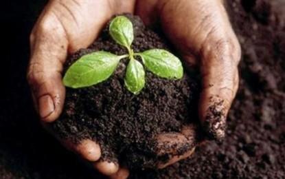 Se llevará a cabo un taller sobre uso sustentable de suelos