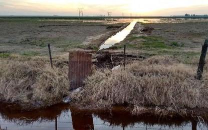 Policía Ambiental frenó una posible inundación