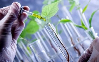 La biotecnología del agro