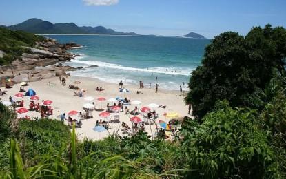 Pura Santa Catarina