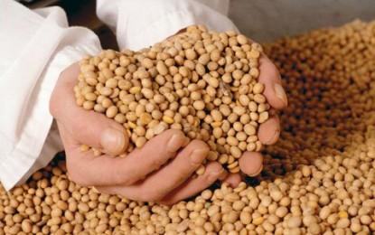 Las compras de granos bajan en los sectores exportadores