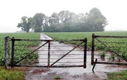 Las lluvias dejaron un nivel de humedad bastante satisfactorio