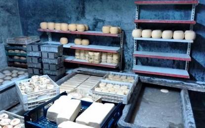 Decomisan 1.800 kilos de queso en una industria cordobesa