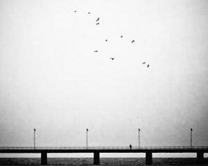 Desolación en blanco y negro