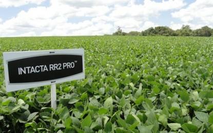 Monsanto amenaza con no invertir más en Argentina