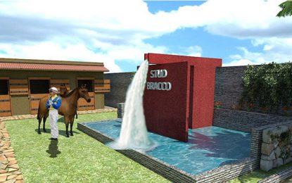 El lugar perfecto para los caballos de carrera