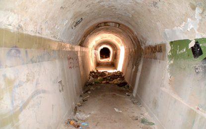 Prevén pavimentar el Vista Verde y abrir el túnel Seco en 2017