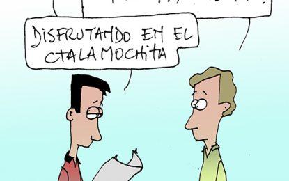 Humor 11/01/2017
