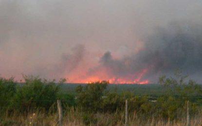Más de un millón de hectáreas afectadas por el fuego