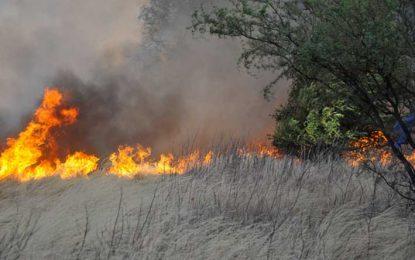 Se estima que el fuego arrasó con más de un millón de hectáreas