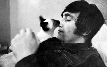 Los gatos de Lennon