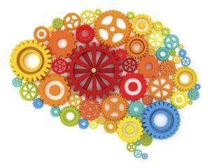 Neurociencias: ¿Por qué se transformaron en un fenómeno masivo?