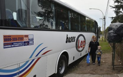 Buses Lep comienza a realizar los recorridos de Plus Ultra
