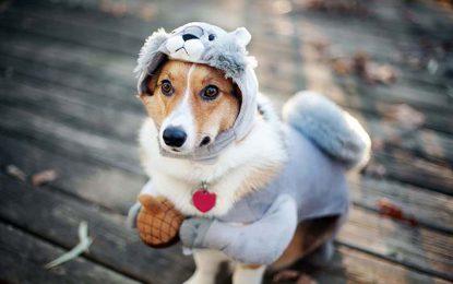 ¡Ojo con el frío!