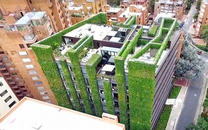 El mayor jardín vertical