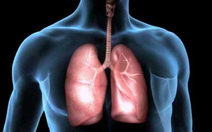 Entre el 10% y el 15% de las personas con cáncer de pulmón jamás fumaron