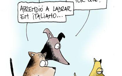 Humor, por Daniel Sánchez