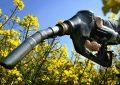 Franceses y alemanes no quieren que ingrese el biocombustible argentino a la Unión Europea