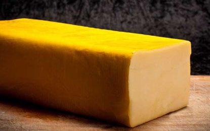 Logran reducir la sal en quesos semiduros sin perder cualidades