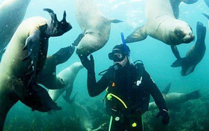 Amistad bajo el agua