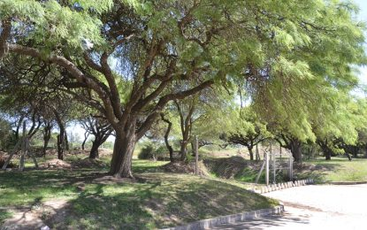 El montecito: un proyecto plantea que se convierta en reserva natural