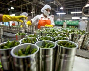 Autorizan nuevo cultivo biotecnológico de soja