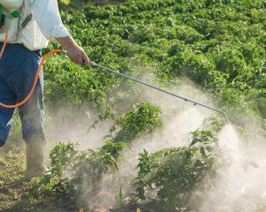 Agroquímicos: una mirada científica