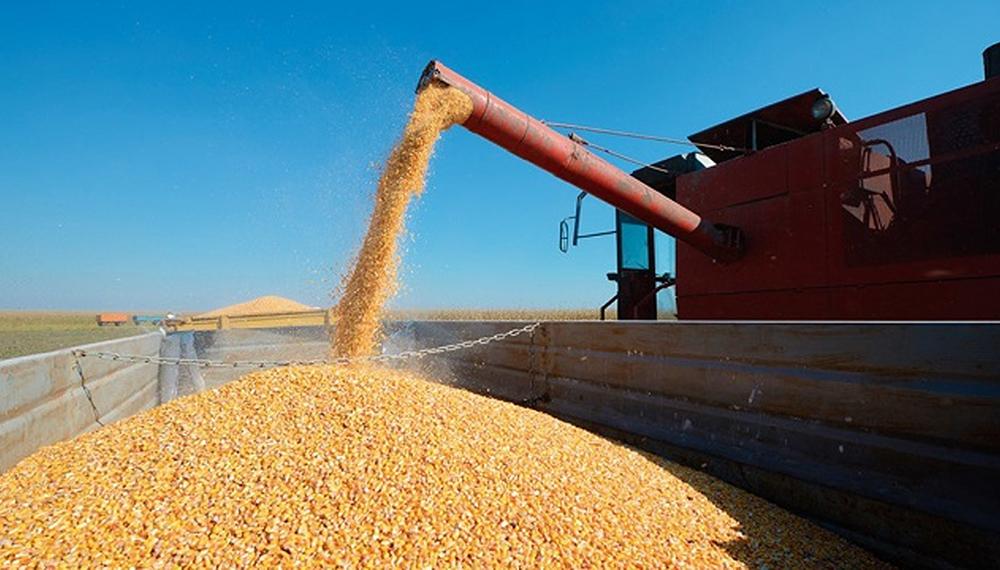 El Gobierno levantó la suspensión de las exportaciones de maíz pero el  campo sigue el paro - El Diario del centro del país