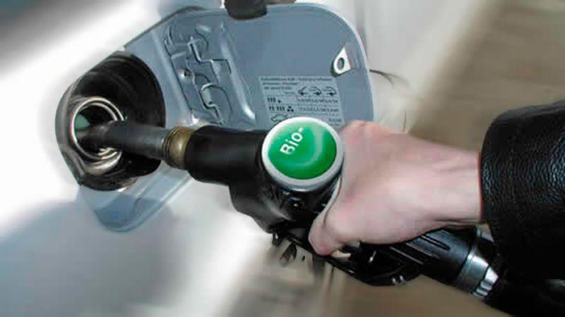 El Gobierno prorrogará la ley de biocombustibles